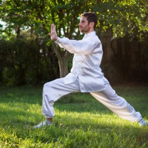 Martial Arts: A Metaphor for Life